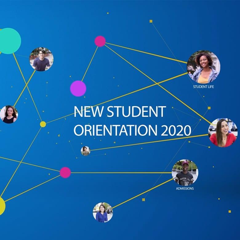 New Translated Alexander College Websites